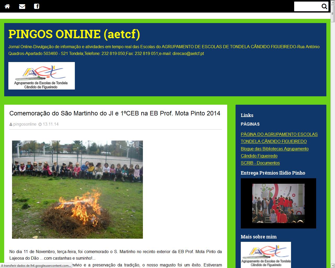 Pingos online